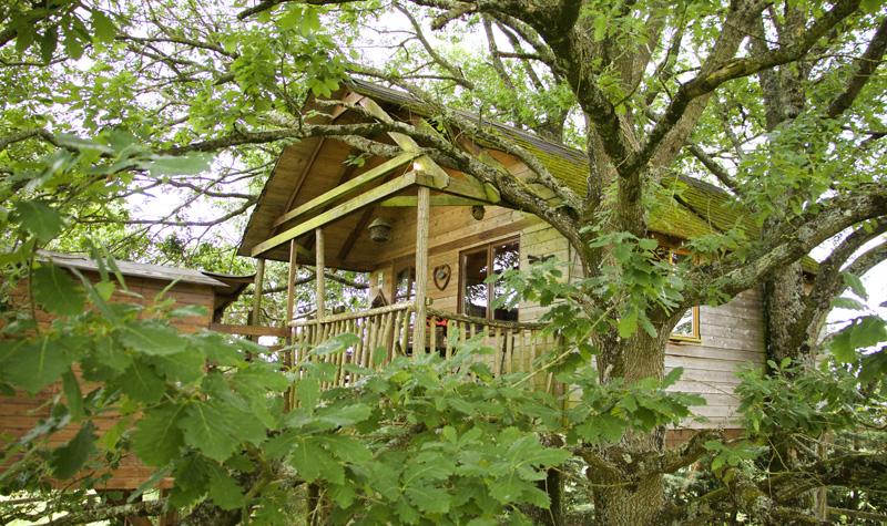 La Cabane aux chênes